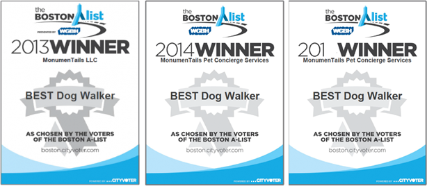 Boston's Best Dog Walker